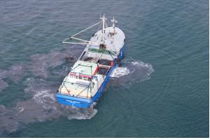 vishandel plugge